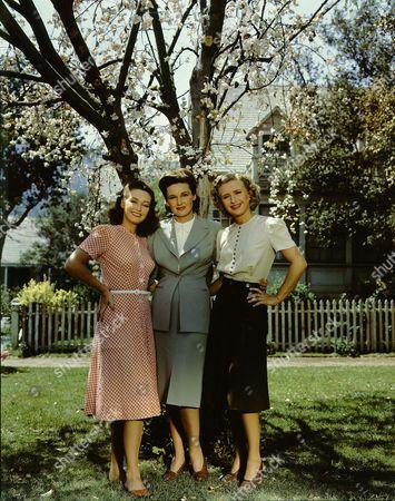 Stock Image of Rosemary  Lane, Priscilla Lane, Lola Lane