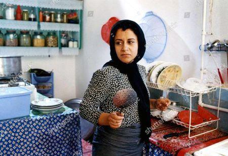 Stock Image of Fereshteh Sadre Orafaiy