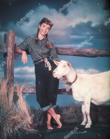Stock Picture of Debbie Reynolds