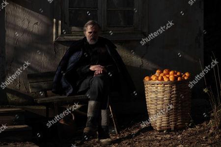 Editorial photo of Tangerines - 2014
