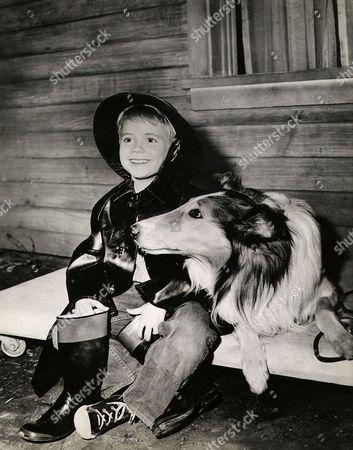 Jon Provost, Lassie