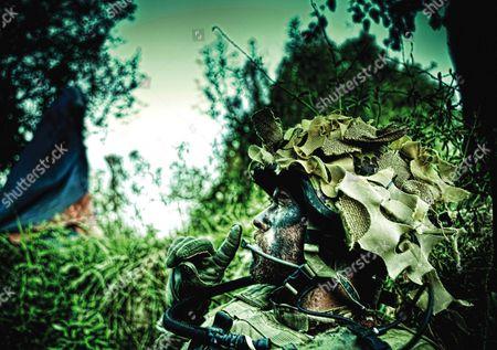 Editorial picture of Armadillo - 2010