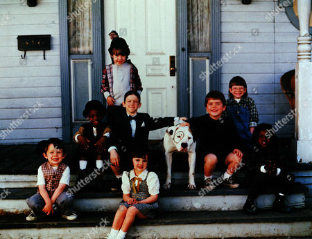 Stock Picture of Zachary Mabry, Kevin Jamal Woods, Courtland Mead, Bug Hall, Brittany Ashton Holmes, Travis Tedford, Jordan Warkol, Ross Elliot Bagley