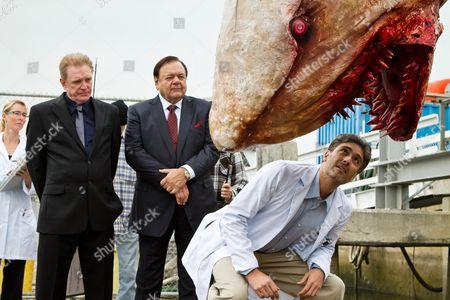 Editorial photo of Jersey Shore Shark Attack - 2012