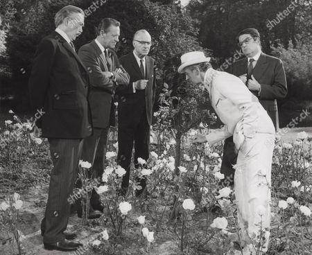 John Huston, William Holden, Charles Boyer, David Niven, Kurt Kasznar