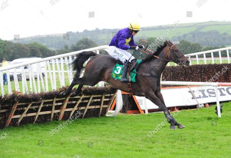 Stock Photo of LISTOWEL CROWN OF GOLD won the Charleville Cheese Maiden Hurdle for jockey Bryan Cooper and trainer Jim Culloty. HEALY RACING