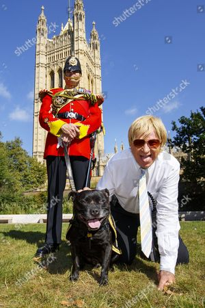 Tory MP MICHAEL FABRICANT poses with Stafford Bull Terrier 'Sgt Watchman V' whilst taking part in Westminster Dog of the Year competition