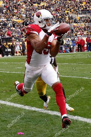 Michael Floyd Pittsburgh Steelers wide receiver David Nelson (15) catches a pass in the end zone during an NFL football game against the Pittsburgh Steelers in Pittsburgh, . The play was called back on a penalty