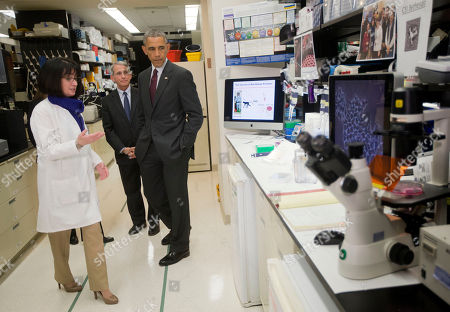 Stock Image of Barack Obama, Nancy Sullivan, Anthony Fauci President Barack Obama, with Dr. Nancy Sullivan, left, Senior Investigator; Chief, Biodefense Research Section, National Institute of Allergy and Infectious Diseases, and Dr. Anthony Fauci, center, director of NIH's National Institute of Allergy and Infectious Diseases, during a NIH tour of the Vaccine Research Center at the National Institutes of Health, in Bethesda, Md