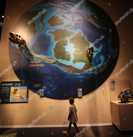 Emma Fisk Emma Fisk looks at a display at the Perot Museum of Nature and Science during a media preview in Dallas, . The museum set to open Dec. 1 was named for billionaire former presidential candidate Ross Perot and his wife, Margot, after their five children made a $50 million gift in honor of them
