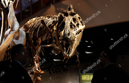 Tyrannosaurus rex bones are on display at the Perot Museum of Nature and Science during a media preview in Dallas, . The museum set to open Dec. 1 was named for billionaire former presidential candidate Ross Perot and his wife, Margot, after their five children made a $50 million gift in honor of them