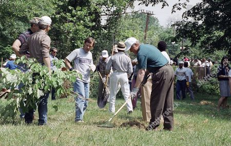Bill Clinton U.S. President Bill Clinton, along with former Georgetown University classmates Charlie Zimmerman, center, and Jim Moore, right, plaid shirt, help clean up a park in Washington, . Twenty-five years ago, the president's class of 68 graduated from the university, a bewildering time, in which the slaying of Roberts F. Kennedy knocked the wind right out of their graduation week