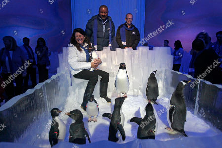 Stock Picture of Julie Scardina, Terry Prather, Brian Morrow SeaWorld Orlando executives, from back left, Julie Scardina, animal ambassador, Terry Prather, park president, and Brian Morrow, director of creative development, talk about a new attraction, Antarctica, Empire of the Penguin that will be added to the SeaWorld Orlando theme park in Orlando, Fla. Antarctica is scheduled to open in the spring 2013