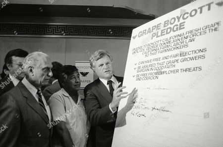 Sen. Edward Kennedy, D-Mass., right, signs a pledge to boycott California grapes, as United Farm Workers Union President Cesar Chavez, center, looks, Capitol Hill, Washington, D.C. The boycott is directed towards California Gov. George Deukmejian who Chaves accused of not enforcing agricultural labor laws. The man on the left is unidentified