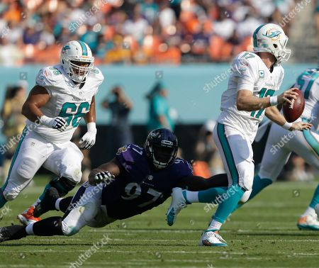 Timmy Jernigan, Ryan Tannehill, Shelley Smith Baltimore Ravens defensive tackle Timmy Jernigan (97) attempts top tackle Miami Dolphins quarterback Ryan Tannehill (17) during the first half of an NFL football game, in Miami Gardens, Fla. To the left is Miami Dolphins guard Shelley Smith (66