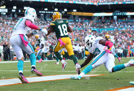 Randall Cobb, Jelani Jenkins, Jimmy Wilson Green Bay Packers wide receiver Randall Cobb (18) grabs a touchdown pass during the second half of an NFL football game as Miami Dolphins outside linebacker Jelani Jenkins (53) and strong safety Jimmy Wilson (27) are late with the tackle, in Miami Gardens, Fla