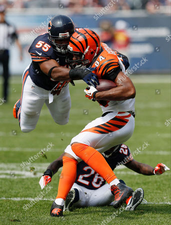 Lance Briggs, Jermaine Gresham, Tim Jennings Chicago Bears linebacker Lance Briggs (55) dives over teammate Tim Jennings (26) to tackle Cincinnati Bengals tight end Jermaine Gresham (84) during the first half of an NFL football game, in Chicago