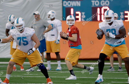 Ryan Tannehill, Nate Garner, Bryant McKinnie Miami Dolphins quarterback Ryan Tannehill, center, prepares to pass during NFL football practice, in Davie, Fla. At left is guard Nate Garner (75) and at right is tackle Bryant McKinnie (78). A senior partner in a New York law firm with experience in sports cases has been appointed by NFL Commissioner Roger Goodell to investigate possible misconduct in the Dolphins' workplace and prepare a report. The Dolphins have pledged full support in the investigation, the NFL said. A troubled relationship between linemen Jonathan Martin and Richie Incognito left both players sidelined