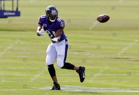 Visanthe Shiancoe Baltimore Ravens tight end Visanthe Shiancoe runs a drill during NFL football training camp at the team's practice facility in Owings Mills, Md