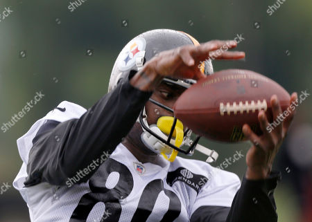 Plaxico Burress Pittsburgh Steelers wide receiver Plaxico Burress makes a catch during NFL football training camp in Latrobe, Pa., on