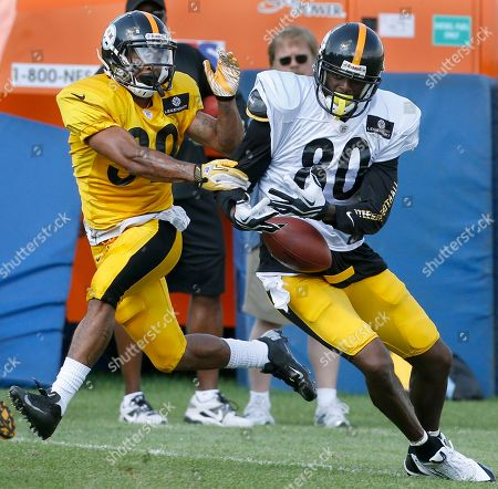 Terry Hawthorne, Plaxico Burress Pittsburgh Steelers cornerback Terry Hawthorne (30) strips the ball from wide receiver Plaxico Burress (80) after he caught a pass during practice at NFL football training camp at the team's training facility in Latrobe, Pa. on