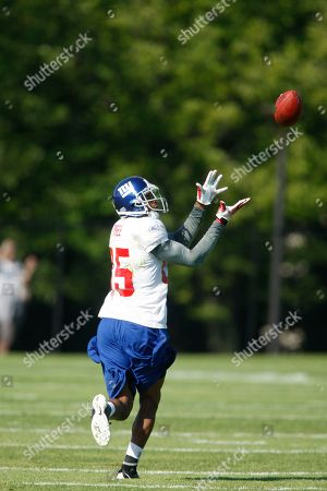 David Tyree New York Giants wide receiver David Tyree in action during NFL football training camp in Albany, N.Y