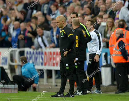 Alex Neill manager of Norwich City look on dejected after conceding a late goal during the Sky Bet Championship match between Newcastle United and Norwich City played at St. James' Park, Newcastle on 28th September 2016