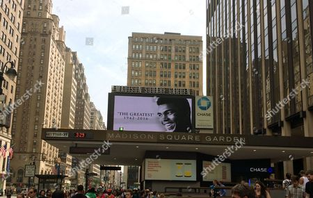 Muhammad Ali The marquee at Madison Square Garden displays an image of the late Muhammad Ali, in New York. Ali fought several times at the Garden including memorable bouts in 1971 and 1974 against Joe Frazier. Ali died Friday night at the age of 74