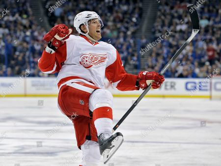 Brad Richards Detroit Red Wings center Brad Richards celebrates his goal against the Tampa Bay Lightning during the third period of Game 2 in a first-round NHL hockey Stanley Cup playoff series, in Tampa, Fla. The Lightning won 5-2