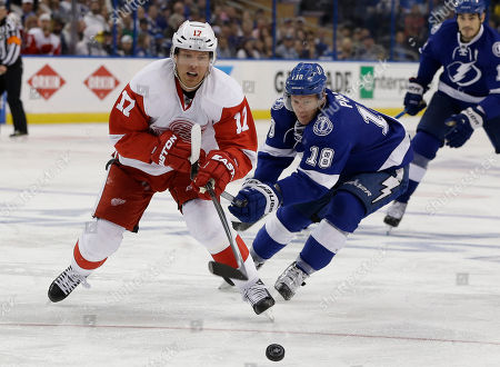 Detroit Red Wings center Brad Richards (17) loses the puck to a stick check by Tampa Bay Lightning left wing Ondrej Palat, of the Czech Republic, during the third period of Game 2 in a first-round NHL hockey Stanley Cup playoff series, in Tampa, Fla