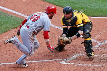 Chris Stewart, Tyler Holt, Will Little Cincinnati Reds' Tyler Holt, left, attempts to steal home as Pittsburgh Pirates catcher Chris Stewart waits to apply the tag during the eighth inning of a baseball game in Pittsburgh, . Holt knocked the ball out of Stewart's glove and was ruled safe on the play. The Reds won in 11 innings, 6-5
