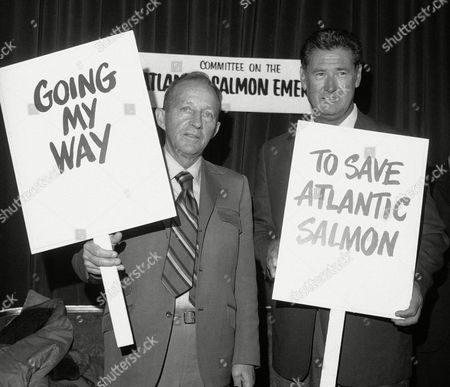 Stock Picture of Bing Crosby, Ted Williams Bing Crosby, left, and former Boston Red Sox baseball player Ted Williams display signs on behalf of saving Atlantic salmon in New York. Both were guests of honor at a dinner meeting of the Committee on the Atlantic Salmon Emergency. Forty five years later federal regulators are starting a new push to preventing the long-imperiled salmon from disappearing from American waters. It will require the U.S. to put pressure on Inuit fishermen in Greenland to stop harvesting a fish that has fed them for hundreds of years, federal officials say
