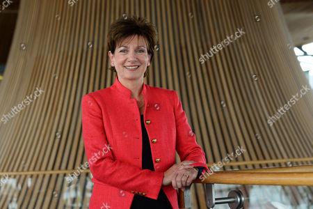 UKIP Leader Diane James