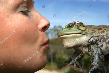 Hollywood animal trainer Jules Sylvester, originally from Devon, Britain, has worked along side Hollywood's elite with his spiders, snakes, cockroaches, lizards, frogs and bugs. His credits include, 'There's Something About Mary', 'Jurassic Park', 'The Hulk' and 'Men In Black'. A Leopard Frog