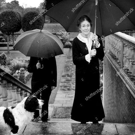 Stock Image of Lady Salisbury