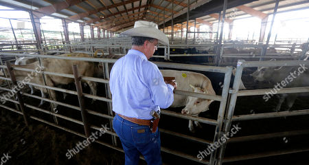 Doug Hutchison Texas and Southwestern Cattle Raisers Association special ranger Doug Hutchison makes a visit to the Giddings Livestock Commission, in Giddings, Texas. Hutchison, one of 30 Special Rangers with the Texas and Southwestern Cattle Raisers Association, photographs suspected stolen livestock, accesses the association's databases of livestock brands and reports of missing animals and consults with sheriff's offices