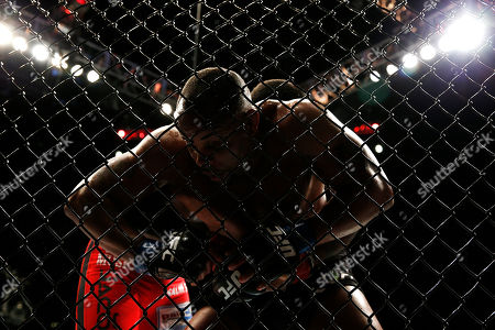 Anthony Johnson, Daniel Cormier Daniel Cormier, foreground, and Anthony Johnson wrestle against the fence during their light heavyweight title bout at UFC 187, in Las Vegas