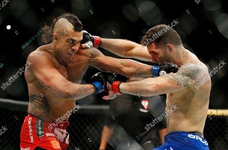 Chris Weidman, Vitor Belfort Chris Weidman, right, and Vitor Belfort trade blows during their middleweight mixed martial arts bout in Las Vegas. The UFC is surging toward the end of the year by flexing its promotional muscles for three straight nights in Vegas. The MGM Grand Garden Arena show has two title fights: Middleweight champion Weidman, defends his belt against Luke Rockhold in a tantalizing style clash pitting two dominant 185-pounders at the peak of their careers