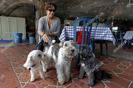"""Michelle Vargas, Carmine, Lucy, Luigi Michelle Vargas, with 8-year-old Bichon Frise-Poodle mix """"Carmine,"""" 11-year-old Wire Haired Terrier """"Lucy,"""" and 10-year-old Shih Tzu-Poodle mix """"Luigi,"""" left to right, visit a cafe in a Manhattan park, on New York's Upper West Side, . Fido is seeking a place at the outdoor dining table, or at least under it. New York could soon become the latest in a series of states to smile on dining with canines, potentially making dogs de rigeur among the tight sidewalk tables and narrow patios of New York City's restaurant scene"""