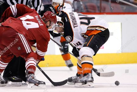 Joe Vitale, Nate Thompson Anaheim Ducks' Nate Thompson (44) wins a face-off against Arizona Coyotes' Joe Vitale (14) during the first period of an NHL hockey game, in Glendale, Ariz. The Ducks defeated the Coyotes 2-1
