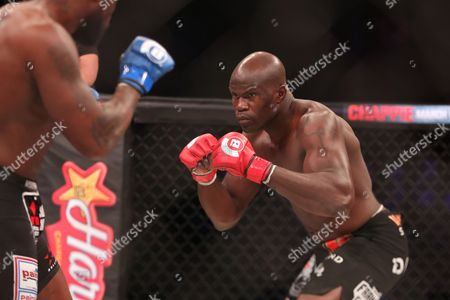 Cheick Kongo Cheick Kongo in action against King Mo during their ight at Bellator 134, in Uncasville, CT. King Mo won via split decision