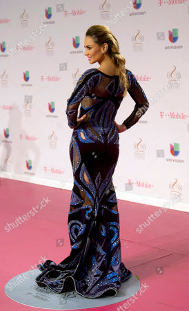 Ximena Cordoba Ximena Cordoba walks the red carpet before the Premio Lo Nuestro Latin Music Awards show in Miami