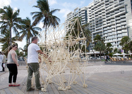 """Stock Photo of Ordis, Francesca Williams, William Stahl William Stahl, second from left, of Miami Beach, Fla., pushes a piece titled """"Ordis,"""" from the installation """"Strandbeest-The Dream Machines of Theo Jansen,"""" as Francesca Williams, left, looks, in Miami Beach. Six of the Dutch artists self-propelled sculptures are being exhibited on the beach. Art Basel Miami Beach, the contemporary art fair that doesn't officially begin until Thursday has already has overtaken parts of Miami and Miami Beach"""