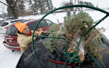 Howell Tree Farm employee Chris Allen loads a Christmas tree on top of a customer's car, in Cumming, Iowa. The Christmas tree likely will cost a little more this year, and growers say it's about time. Six years of decreased demand and low prices put many growers out of business and those who hung on are just relieved they survived