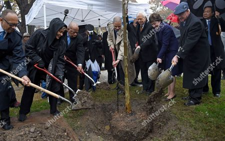 """Eugene Robinson, anet Langhart Cohen, John Lewis, Eric Holder, Thad Cochran, Susan Collins, Roger Wicker Sen. Susan Collins, R-Maine, second from right, and others, participate in a tree planting in honor of Emmett Till, a young African-American killed in 1955, during a ceremony on Capitol Hill in Washington, . From left are, Eugene Robinson of the Washington Post; Janet Langhart Cohen, author of the play """"Anne and Emmett;"""" Rep. John Lewis, D-Ga.; Attorney General Eric Holder; Sen. Thad Cochran, R-Miss., Collins, and Sen. Roger Wicker, R-Miss"""