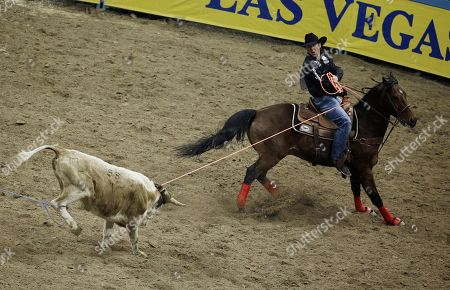 Editorial picture of National Finals Rodeo, Las Vegas, USA
