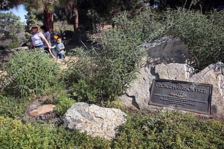 Visitors walk past a plaque marking the George Harrison Tree, and the stump where it formerly stood at lower left, in Los Angeles' Griffith Park. A tree has been planted in the park in memory of Harrison to replace one that was killed by a beetle infestation. City News Service says a yew pine honoring the late Beatles guitarist was planted, in the park on what would have been Harrison's 72nd birthday