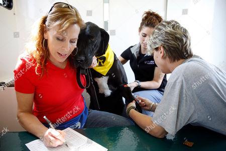 Editorial image of Canine Bloodmobile, Harleysville, USA