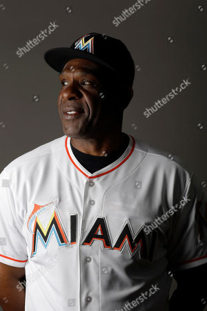 Andre Dawson This is a 2014 photo of Andre Dawson of the Miami Marlins baseball team. This image reflects the Marlins active roster as of when this image was taken