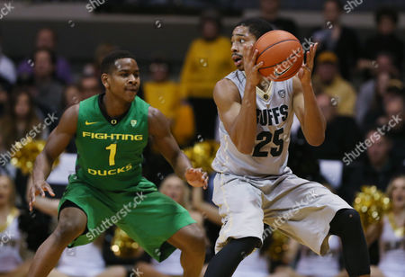 Stock Photo of Spencer Dinwiddie, Dominic Artis Colorado guard Spencer Dinwiddie, right, pulls in the loose ball as Oregon guard Dominic Artis defends in the second half of Colorado's 100-91 victory of an NCAA college basketball game, in Boulder, Colo